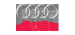 Cerchioni auto Audi